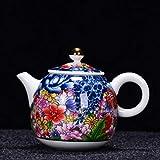 DKNMOL Tetera Tetera De Cerámica Pintada A Mano Kung Fu Juego De Té Verde Flor De Porcelana Hogar Individual Olla Teaware