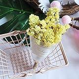 Flores Artificial 1 Unids/Lote Flores Secas Naturales Mini Crystal Grass para Boda Decoración del Hogar DIY Artesanía Regalos Embalaje Flores Secas Accesorios De Fotos Amarillo