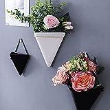 PPuujia Colgador de plantas 3 unids/set triangular, maceta de hierro, clavos, macramé, maceta de cerámica, cestas colgantes para decoración de pared (color: S blanco)