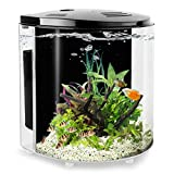 YCTECH 1.2 Gallon Betta Aquarium Starter Kits Fish Tank with LED Light and Filter Pump Black (320black)
