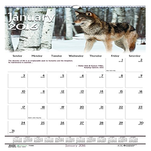 """House of Doolittle 2016 Monthly Wall Calendar, 12"""" x 12"""", Earthscapes Wildlife (HOD3731-16)"""