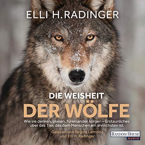 Die Weisheit der Wölfe: Wie sie denken, planen, füreinander sorgen - Erstaunliches über das Tier, das dem Menschen am ähnlichsten ist
