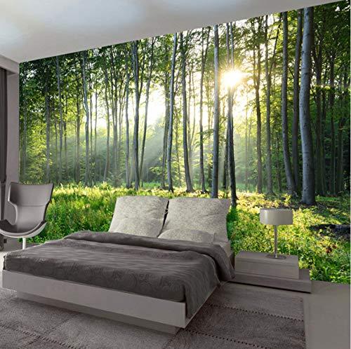 VVNASD 3D Wand Dekorationen Tapete Aufkleber Wandbilder Grüne Naturlandschaftswohnzimmersofa Schlafzimmer Moderne Hauptdekoration Kunst Mädchen Schlafzimmer (W) 400X(H) 280Cm