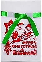 クリスマス ラッピング袋 不織布 巾着 バッグ M 【サンタクロース】 (1枚入り)