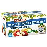 ANDROS - Compote de Fruit - Gourde Recyclable - Sans Sucre Ajouté - Goût Pomme - Idéal pour le Goûter des Enfants et des Bébés - Lot de 20