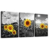 Canvas Wall Art For Living Room Family Wall Decor For Kitchen Black And White Pastoral Scenery Sunflower Flowers Bedroom Wall Painting Art Home Decoration Bathroom Wall Pictures Artwork 16x12 3 Piece
