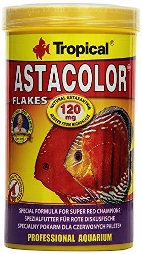 Tropical Astacolor, farbförderndes Flockenfutter, 1er Pack (1 x 500 ml)