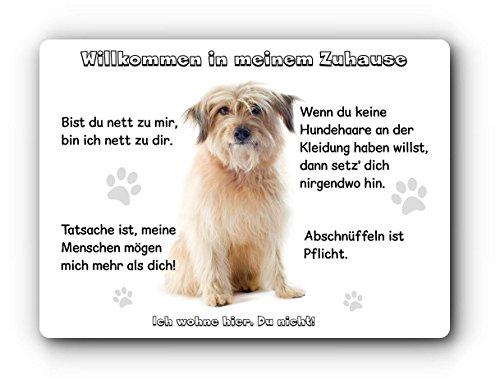 Merchandise for Fans Blechschild/Warnschild/Türschild - Aluminium - 15x20cm - Willkommen in Meinem Zuhause - Motiv: Berger des Pyrénées - 01