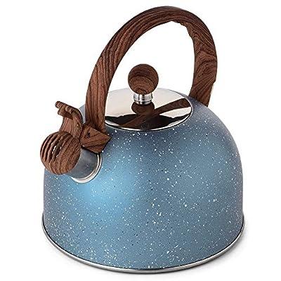 Tea Kettle, VONIKI 2.5 Quart Tea Kettles Stovetop Whistling Teapot Stainless Steel Tea Pots for StoveTop Whistle TeaPot (Light Blue)