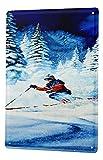 LEotiE SINCE 2004 Cartel Letrero de Chapa XXL Deportes Ski Nieve Bosque