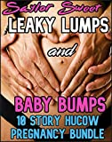 Leaky Lumps and Baby Bumps: 10 Story Hucow Pregnancy Bundle