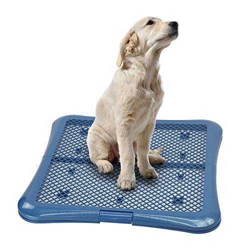 Petphabet Puppy Training Pad Holder