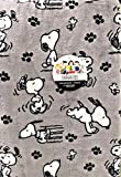 Snoopy Peanuts Gang Happy Dance Velvet Soft Throw Blanket by Berkshire Home and Blanket Co. | 55' x 70'