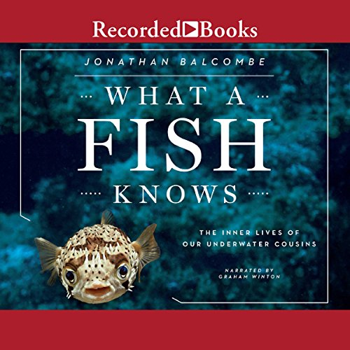 What a Fish Knows cover art