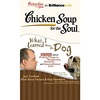 Chicken Soup for the Soul: What I Learned from the Dog - 36 Stories about Perspective, Kindness, and Unconditional Love cover art