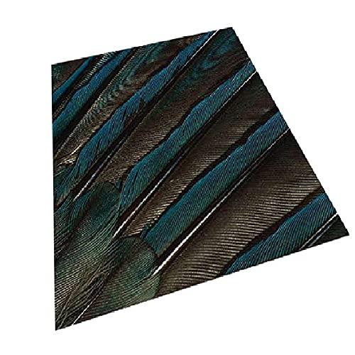 WCCCW Azul Gris Pluma patrón Tridimensional Moda Simple Moda cómoda Estudio de Estudio Mesa de café decoración de Corredor carpet-120x180cm para Comedor, Dormitorio, Pasillo y Habitación Juvenil