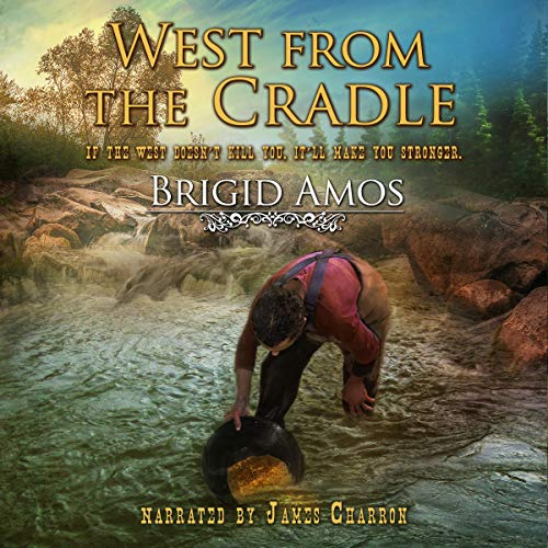 West from the Cradle Audiobook By Brigid Amos cover art