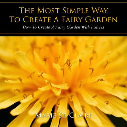 The Most Simple Way to Create a Fairy Garden Titelbild