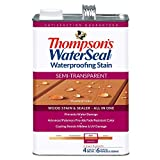 THOMPSONS WATERSEAL TH.042851-16 Semi-Transparent Waterproofing Stain, Woodland...