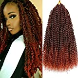18 Inch Passion Twist Crochet Hair 6 Packs/Lot Water Wave Crochet Braiding Hair Long Bohemian Hair for Passion Twist Synthetic Natural Hair Extensions Hot Water Setting Soft Lightweight (T1B/350#)