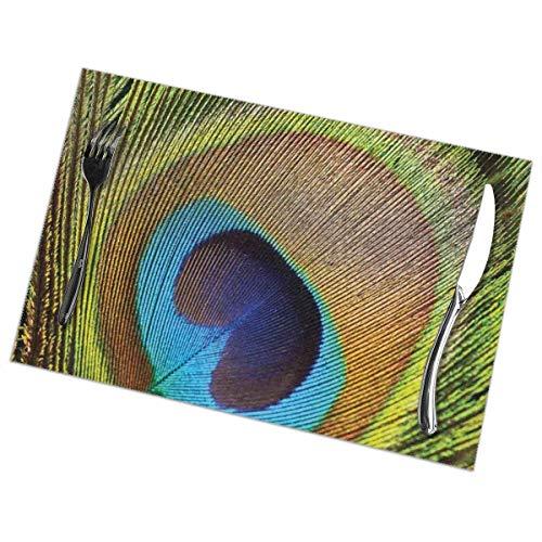 Tommy Warren Tischsets Peahen Peahen Feather mit Augenform Nahaufnahme Bild Exotic Wild Nature Dekoration Teal Senf Tischmatte