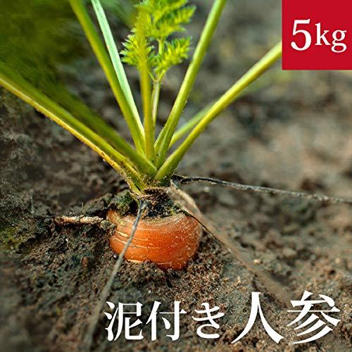 泥付き新人参5kg 国産 無農薬【ゲルソン療法】にんじん ニンジン