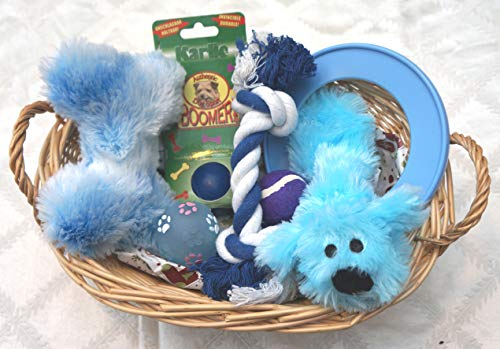 Paradise Pets PUPPIES FIRST CHRISTMAS EASTER BIRTHDAY HOMECOMING WRAPPED DOG TOY GIFT HAMPER FOR HIM