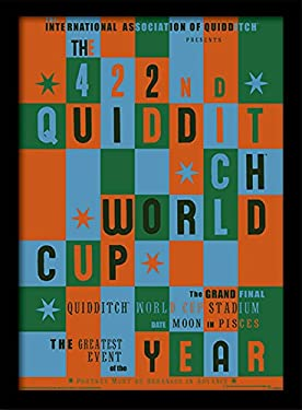 Harry Potter Quidditch World Cup Memorabilia Canvas Print, 30 x 40 cm
