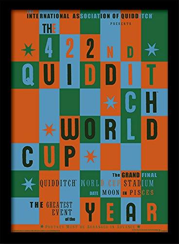 Stampa incorniciata di Harry Potter 'Quidditch World Cup', 30 x 40 cm