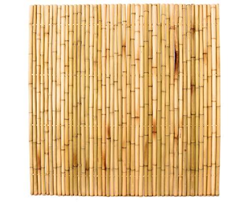 Bambuszaun 180x180cm gelb Gebleicht starr mittels Moso Bambusrohren mit 3,5 bis 4cm verbunden - Sichtschutzzaun Sichtschutzzäune Blickschutz aus Bambus Sichtschutzwand Sichtschutzwände