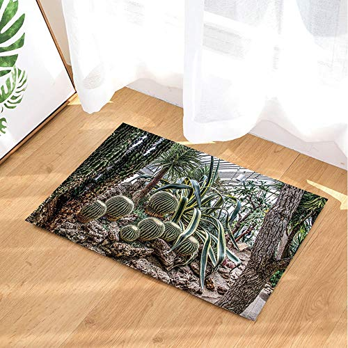 Lumengqi Cactus prickly pear and tropical plants in the shed Home decoration door front mat,bathroom mat,non-slip and easy to clean,high-definition pattern40x60cm,family essential