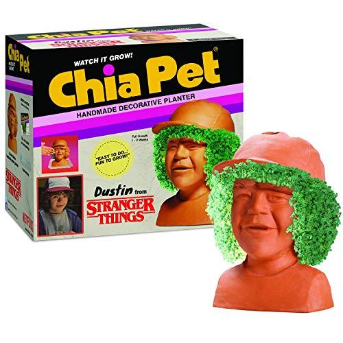 Chia Pet Dustin Stranger Things