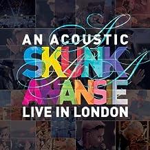Acoustic Skunk Anansie Live in London