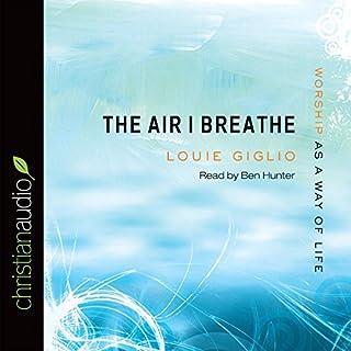 The Air I Breathe audiobook cover art