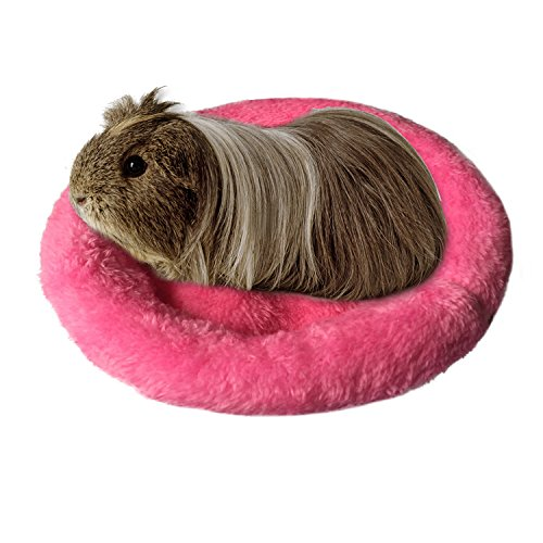 Bwogue - Cama redonda de terciopelo para hámster/erizo/ardilla/ratones/ratas y otros animales pequeños