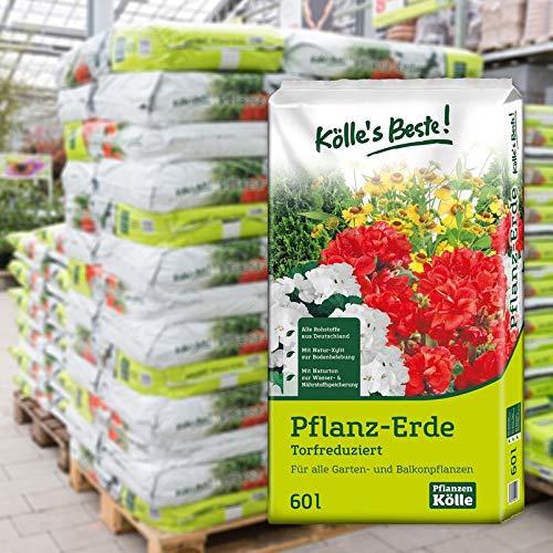 Kölle's Beste! Pflanzerde torfreduziert, 1260 Liter gesamt, 21 Sack à 60 Liter auf Palette