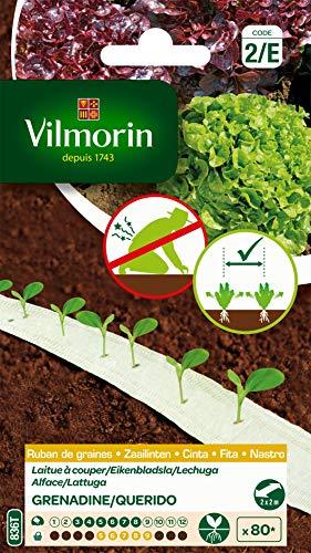 Vilmorin - 2 Rubans laitue à Couper 4 m - Rubans biodégradables - espacement adapté Entre Chaque Graine - Vous décharge de l'éclaircissage - Facile à réussir - rendement jusqu'à 80 Pieds