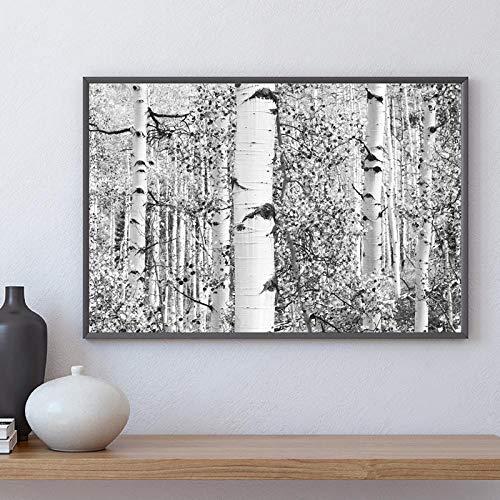 JEfunv Birkenbaum Wald Kunstdruck Bauernhaus Dekor Schwarz und Weiß Rustikale Wandkunst Leinwand Malerei Nordic Poster Wandbild für Zuhause 50x70 cm Kein Rahmen