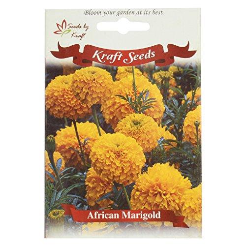 African Marigold F1 Hybrid INCA Type Flower Seeds by KRAFT SEEDS