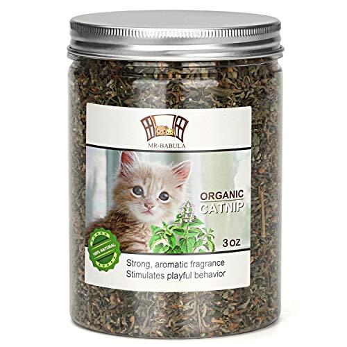 MR-BABULA Organic Catnip, Natural North American Variety, Selected Fresh Catnip Leaves & Bud 3OZ