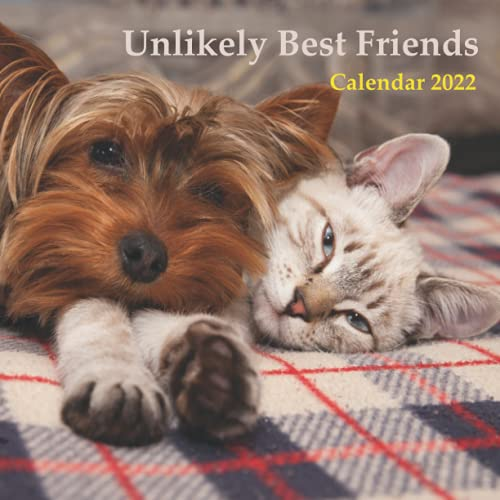 Unlikely Best Friends Calendar 2022: CAT AND DOG Version. Wall And...