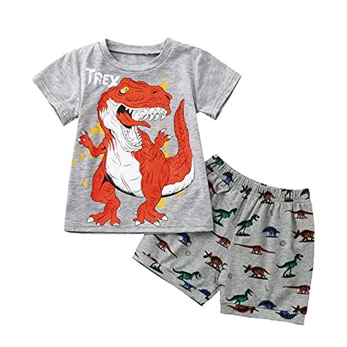 1-7 Años,SO-buts Bebé Niño Niños Chándal De Verano De Dibujos Animados Camisa De Dinosaurio Chaleco Tops + Conjunto De Trajes De Pijamas Cortos (Gris 2, 5-6 años)