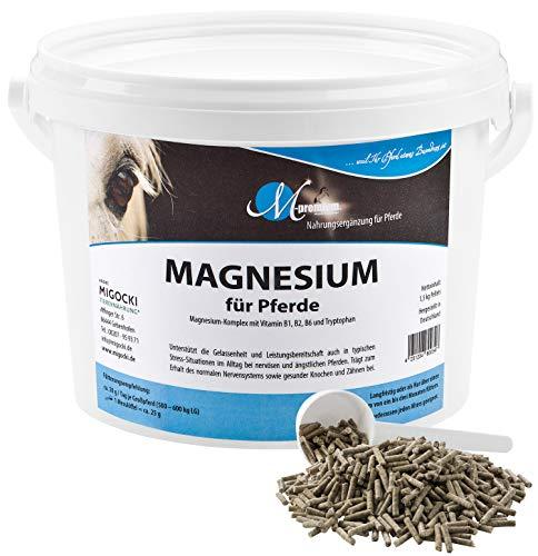 MIGOCKI Magnesio – 1,5 kg – Integratore alimentare per cavalli – Supporta la...