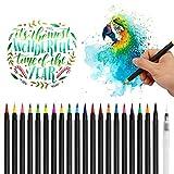 Pinceau Aquarelle, 20 Feutre Aquarellable et 1 Aqua Brush, Feutre Coloriage pour Peinture Aquarelle...