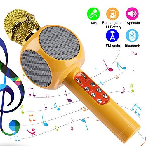 ♫ 【Microfono karaoke multifunzionale】Il microfono karaoke portatile può non solo cantare, ma anche l'altoparlante, può registrare, supportare la scheda SD e l'Apple Phone supporta anche la funzione Selfie. ♫ 【Facile connessione】Abbiamo due modi per a...