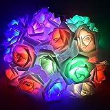 BigFox LEDイルミネーションライト バラ模様 電池式 3m30個 電球 デコレーション 電飾 クリスマス飾り 結婚式 パーティー 告白 (カラー)