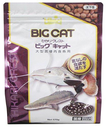 ヒカリ (Hikari) ひかりクレスト ビッグキャット 大型底棲肉食魚用 570g