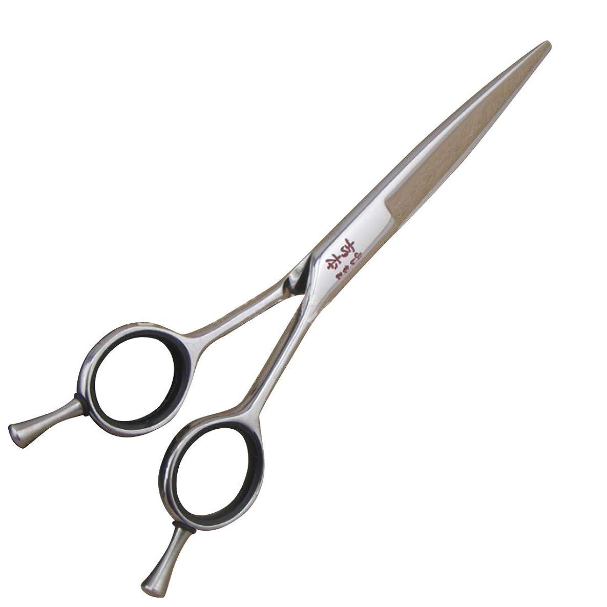 硬さ急性等価理髪用はさみ はさみヘアプロフェッショナル前髪はさみ&フラットシザー日本のコイラインフラットシアーステンレススチールはさみで微調整ネジヘアカットシザーステンレス理髪はさみ (色 : Silver)