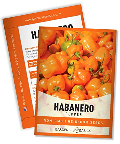 Hot Habanero Pepper Seeds for Planting Heirloom Non-GMO Habanero Peppers Plant Seeds for Home Garden Vegetables Makes a Great Gift for Gardeners by Gardeners Basics