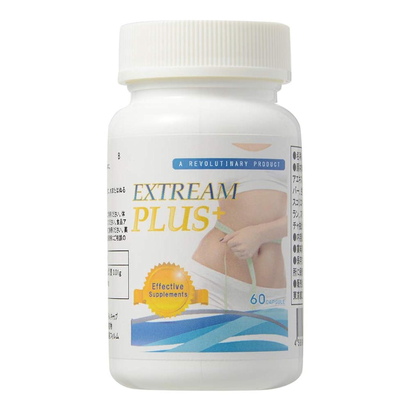 必需品降雨クライストチャーチExtream Plus (エクストリームプラス) 栄養補助食品 L-カルニチン サプリメント [250mg×60粒/ 説明書付き]